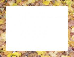 Marco para fotos de hojas secas para imprimir
