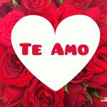 Te-amo-para-compartir-en-facebook-4